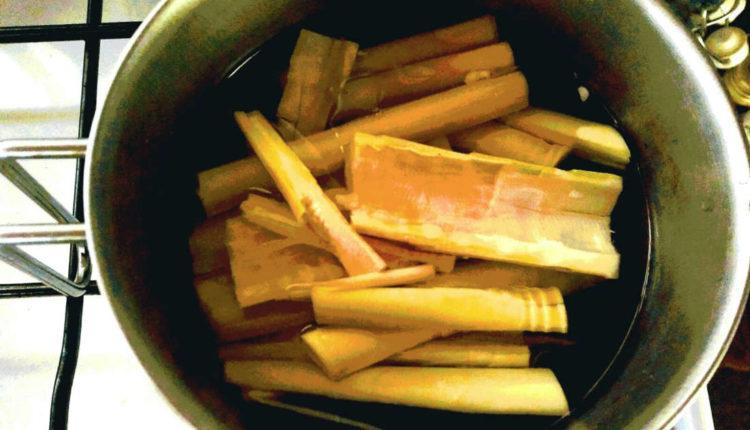 germogli di bambùgermogli di bambù